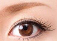 睫毛种植后多久可以化妆 移植睫毛后能洗头吗