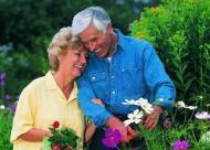 老年人多少天洗一次头合适?洗头时的四点注意事项